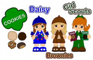 Girl Scouts - 2013