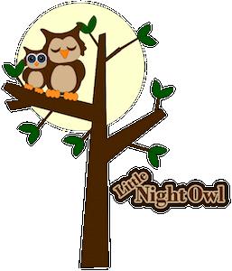 Little Night Owl - 2013