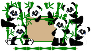 Panda Bears - 2015