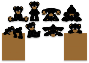 Little Black Bears- 2012