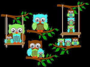 Spring Owls - 2014